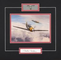 Luftwaffe Series  - WALTER WOLFRUM