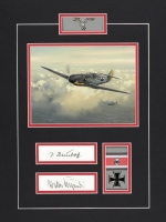 Luftwaffe Series- JOHANNES STEINHOFF & WALTER KRUPINSKI