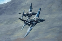 ROCK and ROLL-BAe HAWKS - various signed editions