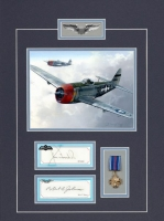 USAAF Combat Series- JAMES GOODSON & ROBERT JOHNSON