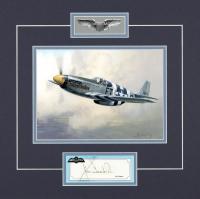 USAAF Combat Series  - JAMES GOODSON