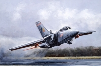 "TORNADO F3 ""FIREBIRD"" - various signed editions"