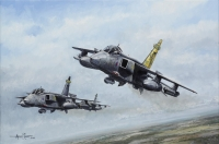 54 SQUADRON - various signed editions