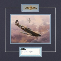 Battle of Britain Series  - DENYS GILLAM