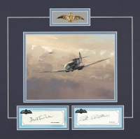 Battle of Britain Series - DAVID SCOTT-MALDEN & PETER BROTHERS