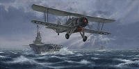 FLIGHT AGAINST THE BISMARCK - Various Signed Editions