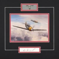 Luftwaffe Series  - FRITZ LOSIGKEIT
